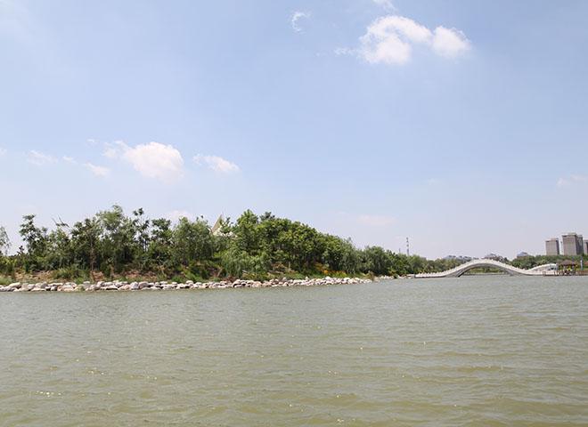溢洪河湖心岛绿化
